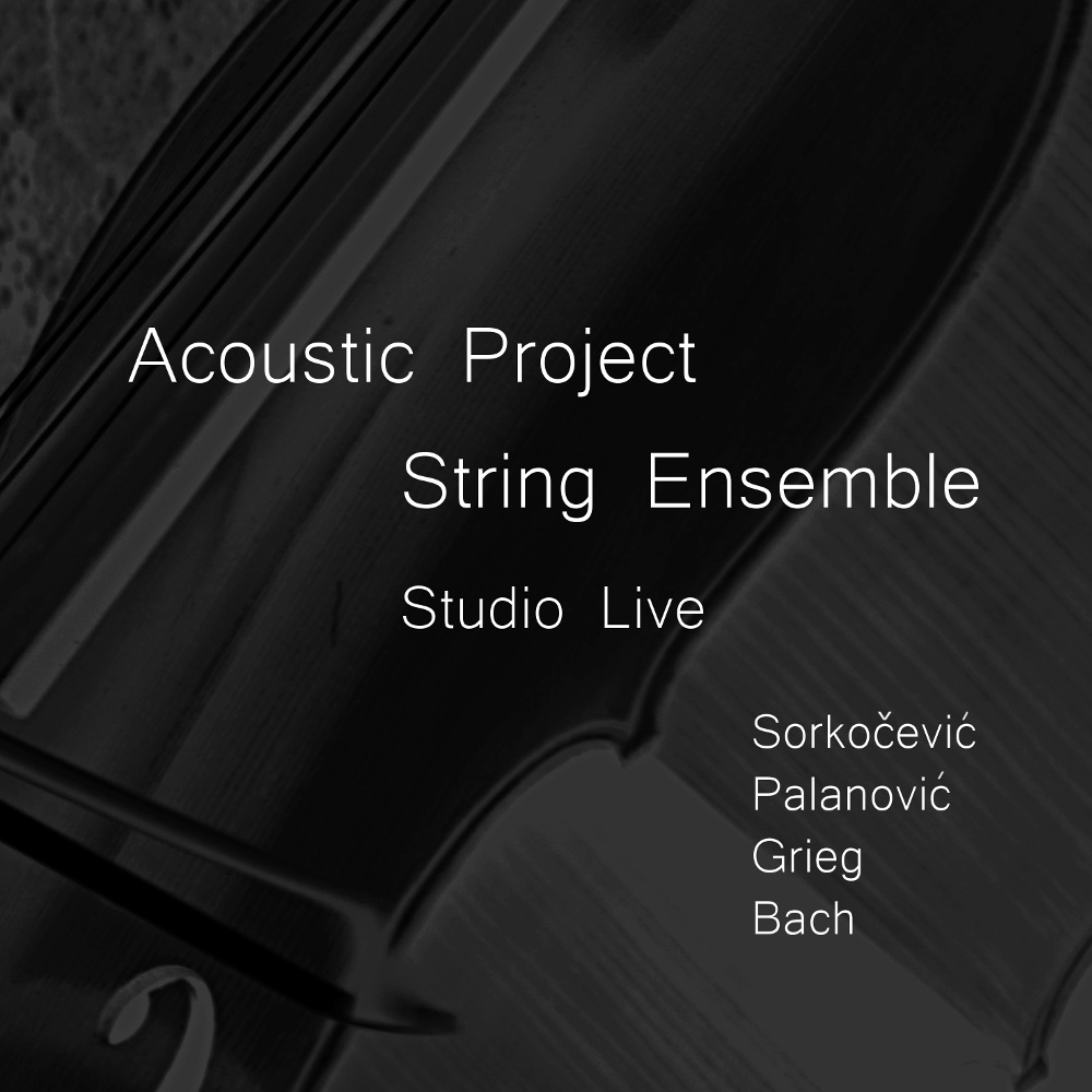 Go to Acoustic Project String Ensemble